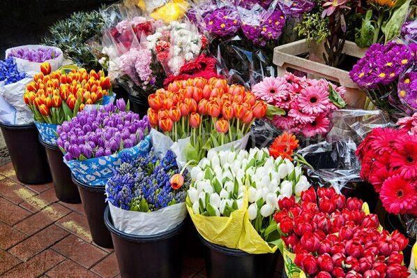 Пулково цветы мелкий оптом, где купить букеты в алматы карточку онай